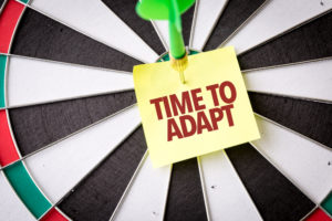 CEO ability to adapt